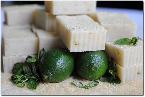The Tropical Bar: Mojito